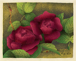 Roses. Flowers, color woodcut, garden